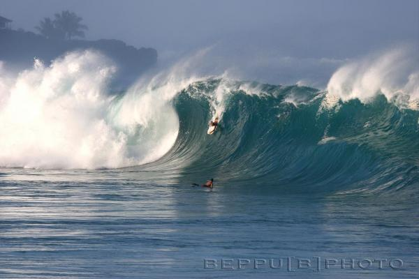 Wade Harrison at Waimea Shorebreak